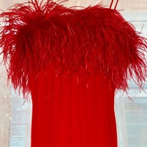Vintage Morton Myles Red Ostrich Feathered Dress